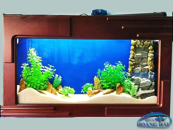 ho-ca-treo-tuong-1497 Tư vấn thiết kế lắp đặt hồ cá thủy sinh tận nơi