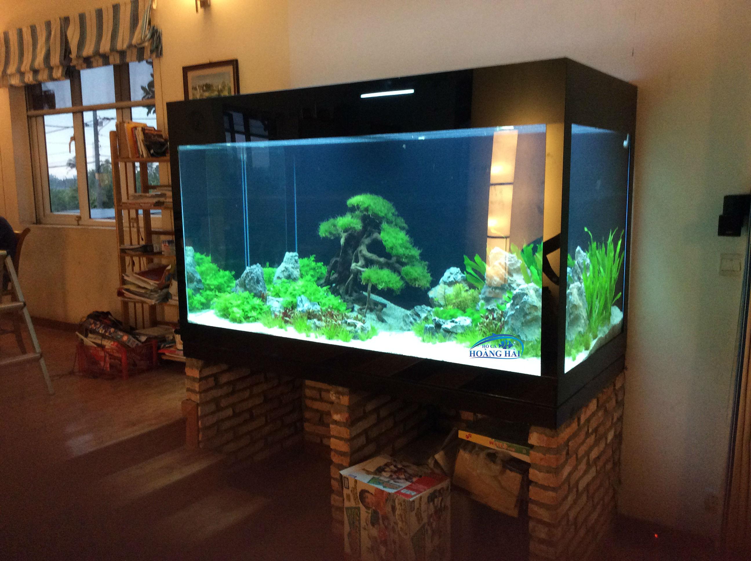 image1 Thi công hoàn tất hồ cá thủy sinh cho khách hàng
