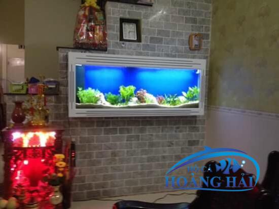 HCTT20-1-e1497495942237 Bể cá thủy sinh treo tường - đồ vật trang trí hoàn hảo cho nội thất nhà bản