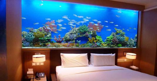1528101314 Lắp đặt hồ cá cảnh trong nhà – xu hướng giải trí mới lạ và độc đáo